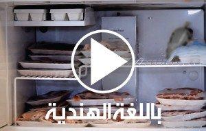 ALYASRA-VIDEO-IMAGES-AR-06