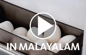 ALYASRA-VIDEO-IMAGES-ENG-07